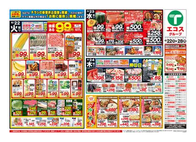 6月22日号茨城基本版日替わり・99円均一・肉のジャンボ市・通し:おもて